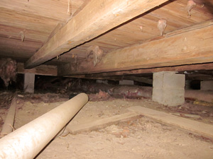 Pier and beam exclusions critter ridder texas austin tx for How to build a crawl space foundation for a house